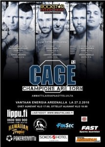 mma cage champions are born